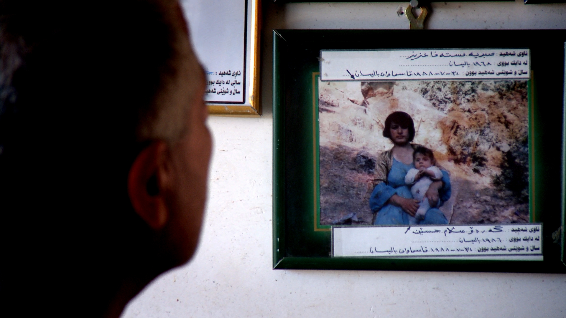 SALAM HUSSEIN AZIZ's baby son died in his arms after a chemical attack on the Balisan valley in 1988. He found the bodies of his wife and other children in a shelter close to Sheikh Wasan village.