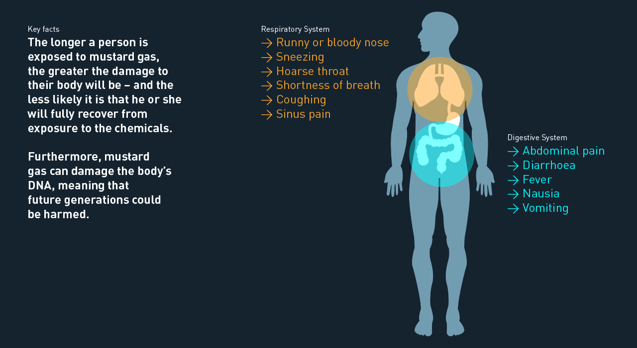THE EFFECTS OF CHEMICAL AGENTS ON THE HUMAN BODY